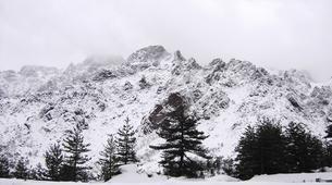 Raquetas de nieve-Morosaglia-Guided Snowshoe Hike in the Asco Valley, Corsica-4