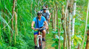 Mountain bike-Bali-MTB Tour of Mt. Batur in Bali-3