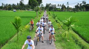 Mountain bike-Bali-MTB Tour of the Tegallalang Rice Terraces in Bali-2