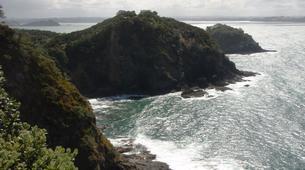 Jet Skiing-Paihia-Jet Ski Tour of Moturoa in the Bay of Islands-3