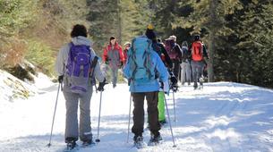 Snowshoeing-Lourdes-Snowshoeing excursion in the Hautacam crests near Lourdes-3