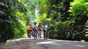 Mountain bike-Bali-MTB Tour of the Tegallalang Rice Terraces in Bali-6