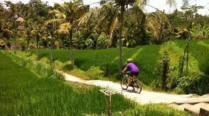 Mountain bike-Jatiluwih-Jatihluwih to Canggu MTB Excursion-1