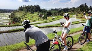 Mountain bike-Jatiluwih-Jatihluwih to Canggu MTB Excursion-6