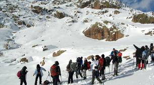 Raquetas de nieve-Morosaglia-Guided Snowshoe Hike in the Asco Valley, Corsica-5