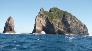 Jet Skiing-Paihia-Jet Ski Tour of Cape Brett in the Bay of Islands-6