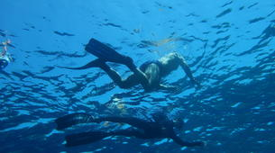 Snorkeling-Kefalonia-Snorkelling excursion in Kefalonia-2