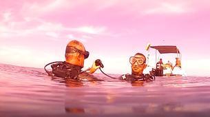 Plongée sous-marine-Lagon de Saint-Gilles-Baptême de Plongée à Saint-Gilles, La Réunion-5