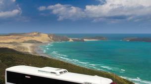 Sandboarding-Paihia-Sandboarding & Off-Road tour in Cape Reinga-2