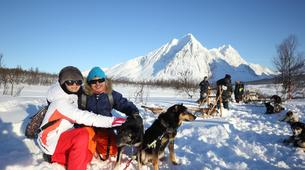 Chiens de traîneau-Tromsø-Dog sledding afternoon excursion in Tromsø-2
