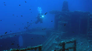 Scuba Diving-Athens-Boat dives for certified divers in Nea Makri, Athens-4