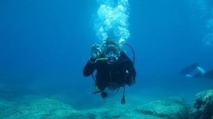 Scuba Diving-Kefalonia-Recreational dives in Kefalonia-3