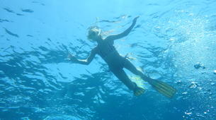 Snorkeling-Kefalonia-Snorkelling excursion in Kefalonia-5