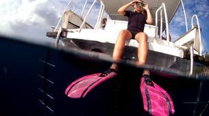Snorkeling-Les Trois-Îlets-Excursion Snorkeling aux Trois-Îlets, Martinique-5