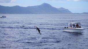 Experiences Wildlife-Chutes de Tamarin - Gorges de Rivière Noire-Observation des Baleines sur la Côte Ouest de Maurice-6