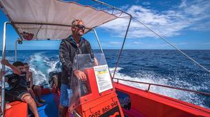 Plongée sous-marine-Lagon de Saint-Gilles-Baptême de Plongée à Saint-Gilles, La Réunion-3