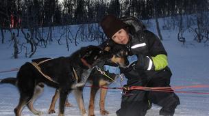 Chiens de traîneau-Tromsø-Dog sledding afternoon excursion in Tromsø-1