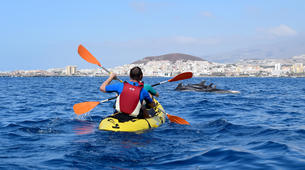 Sea Kayaking-Los Cristianos, Tenerife-Kayaking with dolphins and snorkeling with turtles in Tenerife-4