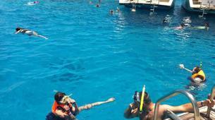Snorkeling-Sharm El-Sheikh-Snorkeling tour in Ras Mohammed, from Sharm El Sheikh-2