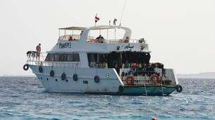 Snorkeling-Sharm El-Sheikh-Snorkeling tour in Ras Mohammed, from Sharm El Sheikh-3