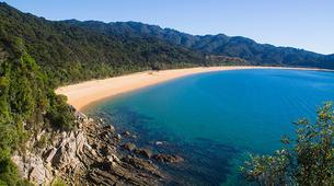Sea Kayaking-Marahau-Multi Day Camp & Kayak Trip in Abel Tasman National Park-2