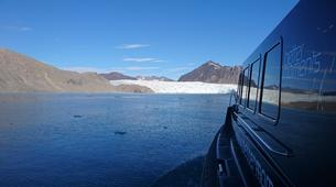 Wildlife Experiences-Svalbard-Boat Tour to Ny-Ålesund, the Northernmost City in the World-5