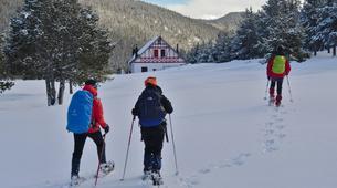Snowshoeing-Andorra-Snowshoeing near Canillo, Andorra-4