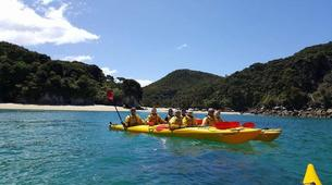 Sea Kayaking-Marahau-Kayak Excursion to Observation Beach in Abel Tasman National Park-5
