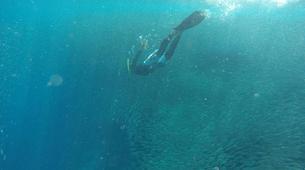 Canyoning-Cebu-Kawasan Falls & Moalboal Island Private Tour Package-9