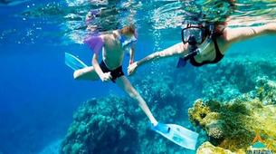 Snorkeling-Sharm El-Sheikh-Snorkeling tour in Ras Mohammed, from Sharm El Sheikh-1