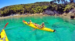 Sea Kayaking-Marahau-Kayak Excursion to Observation Beach in Abel Tasman National Park-2