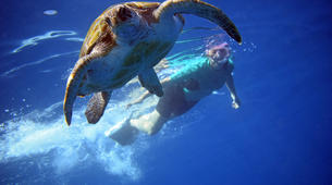 Sea Kayaking-Los Cristianos, Tenerife-Kayaking with dolphins and snorkeling with turtles in Tenerife-1