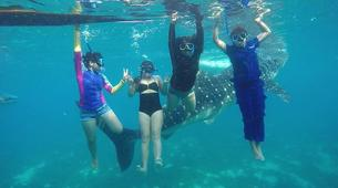 Canyoning-Cebu-Kawasan Falls & Whale Watching Private Tour Package-8
