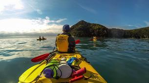 Sea Kayaking-Marahau-Kayak & Bush Walk in Abel Tasman National Park-3