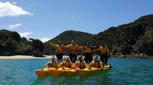 Sea Kayaking-Marahau-Kayak & Hike Tour of Abel Tasman National Park-1