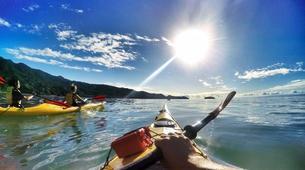 Sea Kayaking-Marahau-Kayak & Hike Tour of Abel Tasman National Park-2