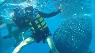 Canyoning-Cebu-Kawasan Falls & Whale Watching Private Tour Package-9
