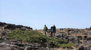 Hiking / Trekking-Mount Etna-Guided Hiking Trip Up Mount Etna-2