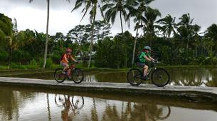 Mountain bike-Gianyar-MTB Tour of Abuan Traditional Village in Bali-1