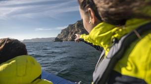 Jet Boating-Lisbon-Speedboat tour in Arrabida Natural Park near Lisbon-2