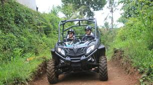 Quad biking-Payangan-Quad biking & buggy excursion near Ubud, Bali-2
