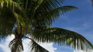Vols Panoramiques-Bora Bora-Découverte de Taha'a en hydravion depuis Bora Bora-5