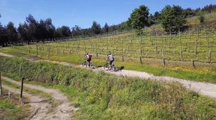 VTT-Guimaraes-Guided MTB Tour of Guimarães-1