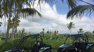 Quad biking-Payangan-Quad biking & buggy excursion near Ubud, Bali-6