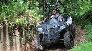 Quad biking-Payangan-Quad biking & buggy excursion near Ubud, Bali-1