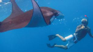 Snorkeling-Nusa Lembongan-Snorkeling Day Trip from Bali to Nusa Lembongan and Nusa Penida-3