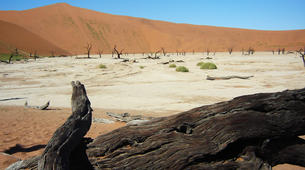 Safari-Windhoek-3 Day Sossusvlei tour in Namib Desert-4