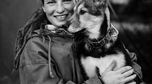 Dog sledding-Rovaniemi-Husky cart excursion from Rovaniemi-3
