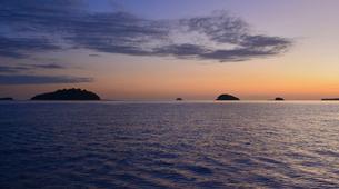 """Wildlife Experiences-Mayotte-Safari """"Grand matin"""" pour observer les baleines et les dauphins, Ile de Mayotte-2"""
