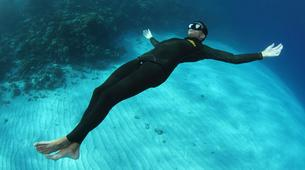 Freediving-Hyeres-Relaxation diving in Hyeres, France-3